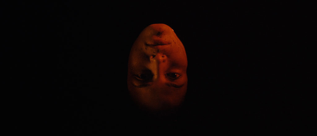 Why 'We Are the Flesh' Has a Deeper Twist Ending Than 'The Sixth Sense'
