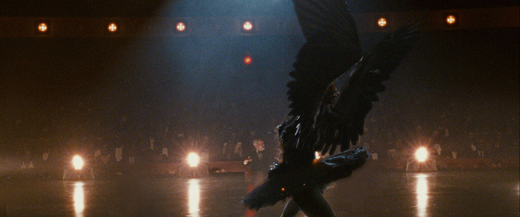 The Giant Explanation of Black Swan