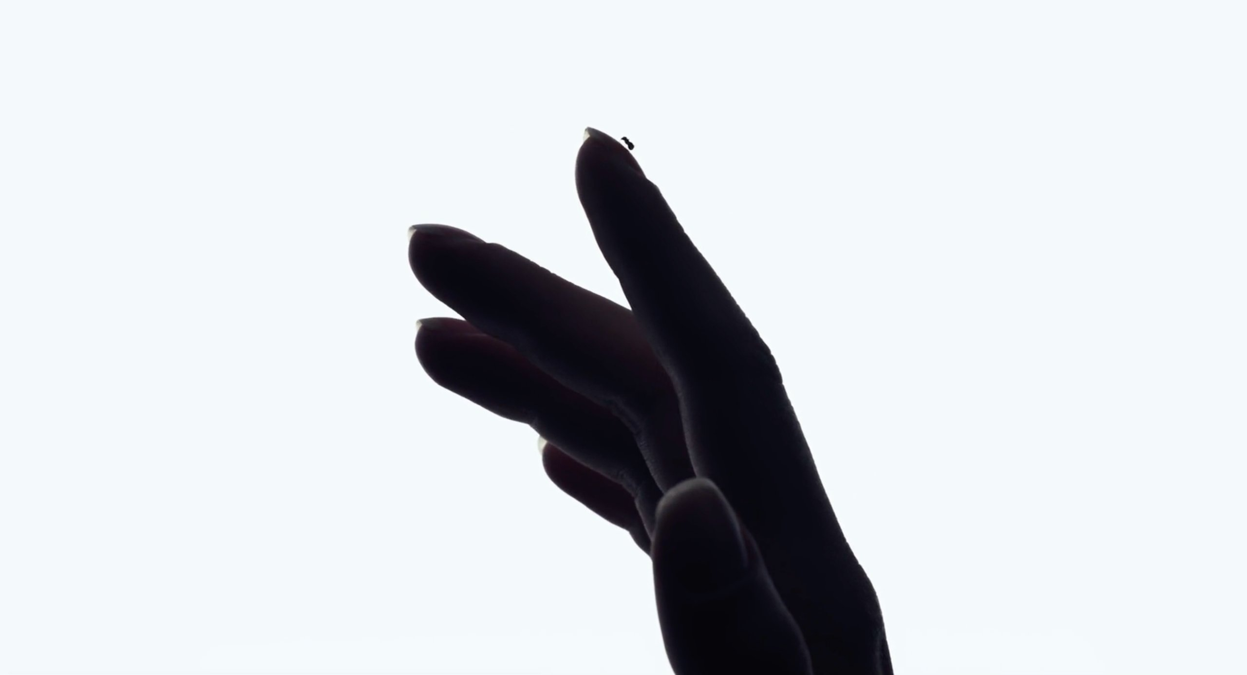 An ant crawls on Scarlett Johansson's hand at the beginning of Under the Skin