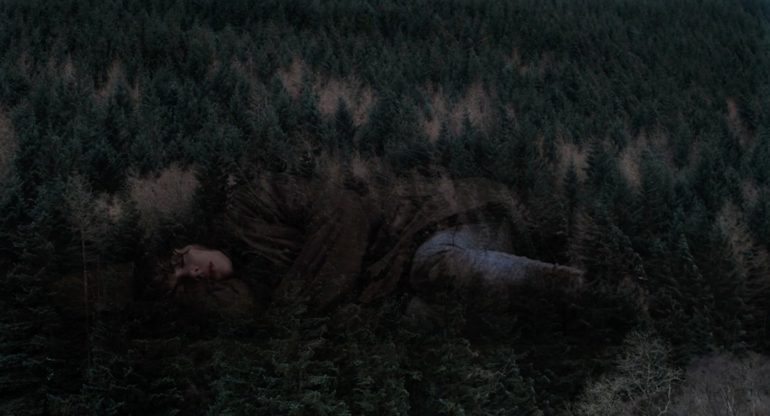 Scarlett Johansson fades into the trees of a forest in Under the Skin